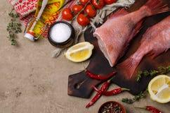 Луциан рыб сырцовый стоковая фотография rf