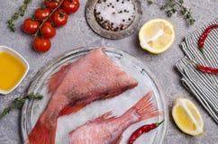 Луциан рыб сырцовый стоковые изображения