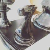 Лошадь шахмат стоковая фотография rf