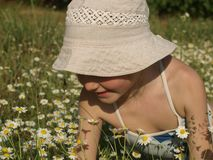 Маленькая девочка в бежевой шляпе солнца в середине поля стоцвета стоковое изображение