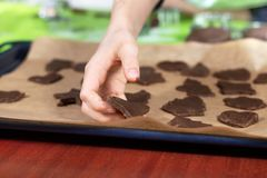 Мальчик аранжирует формы печенья отрезка вне на печь подносе На заднем плане, журнальный стол силикона и резцы печенья стоковое изображение rf