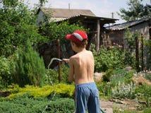 Мальчик поливает из шланга сад стоковое фото rf