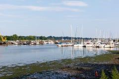 Марина в Stamford, Коннектикуте, со шлюпками, тростники воды стоковое фото