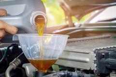 Механик обслуживать обслуживания автомобиля лить новую смазку масла в двигатель автомобиля Селективный фокус стоковая фотография rf
