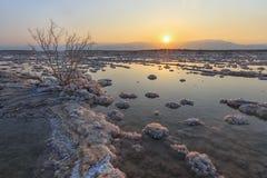 Мертвое море, Ein Bokek, Израиль стоковые фотографии rf