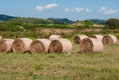 Много связок сена между холмами Тосканы стоковое фото