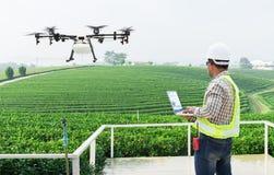 Муха трутня земледелия компьютерного управления wifi пользы фермера техника к распыленному удобрению на полях чая стоковая фотография