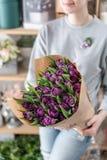 Молодая красивая женщина держа букет весны пурпурных тюльпанов в ее руке Пук свежих отрезанных цветков весны в женщине стоковое изображение