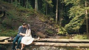 Молодые и красивые пары совместно сидят на мосте над небольшим рекой в парке Погода лета Стрельба от воздуха сток-видео