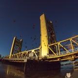 Мост башни Сакраменто стоковое изображение