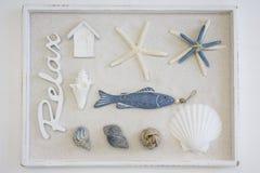 Морская коробка натюрморта стоковые фотографии rf