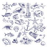 Набор руки вычерченный морской Собрание раковины краба узла морских звёзд осьминога краба акулы маяка рейса океана моря lifebuoy иллюстрация штока