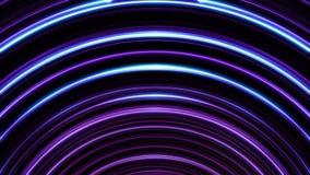 Накаляющ, дуговидные, пурпурные линии линии мерцающие бесконечно Безшовная, loopable анимация абстрактного света радуги иллюстрация вектора