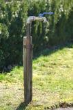 На открытом воздухе faucet в саде стоковая фотография rf