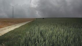 Нереальный ландшафт с полями акции видеоматериалы