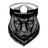 Пантера, пума, кугуар, кот r бесплатная иллюстрация