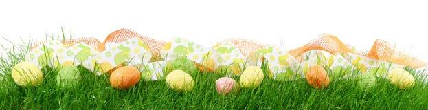 Панорама травы с пасхальными яйцами на белой предпосылке стоковое изображение