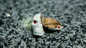 Панорама отрезка в черепе половинной конфеты форменном каркасном сток-видео