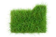 Папка травы на белой предпосылке стоковая фотография