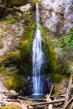 Падения Marymere, олимпийский национальный парк, Вашингтон, США стоковая фотография rf