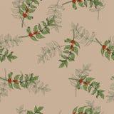 Coffee branch pattern. Hand drawn vector. stock illustration