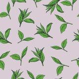 Green tea pattern. hand drawn vector illustration. stock illustration