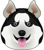 Dog husky Alaskan Malamute stock illustration