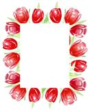 Frame red tulips for invitations, labels, cards. Watercolor. vector illustration