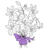 Flat vector beautiful black and white lilies and leaves royalty free illustration