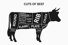 Cuts of beef scheme with cow. Meat cuts poster for butcher shop. Vector. stock illustration