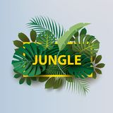 Framed branches of tropical plants  with the inscription `JUNGLE`. stock illustration