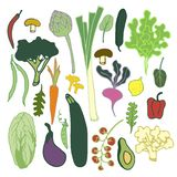 Healthy food isolated vegetables colorful set stock illustration