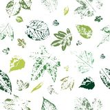 Seamless pattern with imprints of green leaves. vector illustration