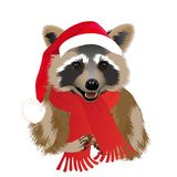 Raccoon in a funny Santa`s red cap. Christmas and New Year card. Vector illustration stock illustration