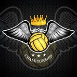 Water polo ball with wings and crown on blackboard. Vector sport logo for any team. And championship stock illustration