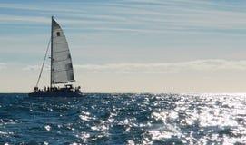 Плавание против невзгоды стоковое фото rf