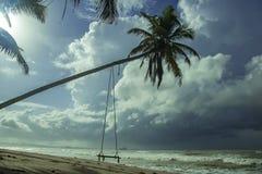 Пляж города Axim обозревая море и замок Пляж в Axim с вися качанием в ладони стоковые изображения rf