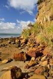 Пляж залива обезьяны, южная голова, Новая Зеландия стоковое фото rf