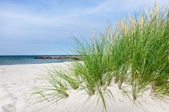 Пляж моря Blatic - панорама стоковое фото