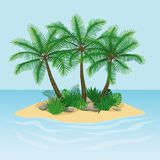Island with palm trees, rocks and stones stock illustration