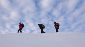 Путешественники следовать одним другое вдоль снежного гребня Команда Alpenists в зиме идет покрыть горы хорошо скоординированный акции видеоматериалы