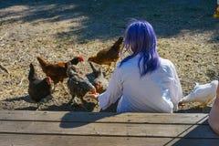 Пурпурные с волосами женские питаясь цыплята стоковая фотография rf
