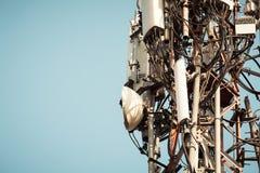 Птица запятнала трансформатор высокого напряжения Птицы не получают сотрясенными по мере того как они нет хорошие проводники элек стоковая фотография rf