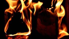 Пылая горячий горящий огонь сток-видео