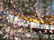 Прекрасный вид деревянной шлюпки в Копенгагене в Дании окружил морем цветков ‹â€ ‹â€ в небольшом озере стоковые фотографии rf