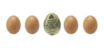 Предпосылка пасхи пустая с пасхальными яйцами и весной цветет стоковая фотография