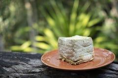 Прессформа на хлебе покрытом с грибком стоковое фото