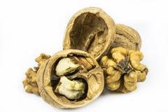 Прерванные грецкие орехи, раковины, изолированные на белой предпосылке стоковые изображения
