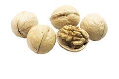 Прерванный грецкий орех и все грецкие орехи стоковое фото rf
