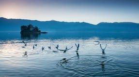 Прибрежный пейзаж озера erhai стоковая фотография rf